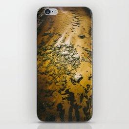 Wild River iPhone Skin