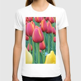 Tulips Red and Yellow T-shirt
