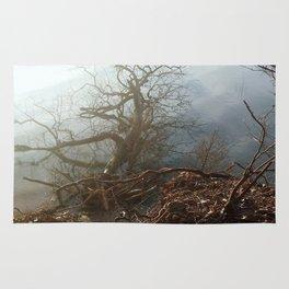Fallen Tree Rug