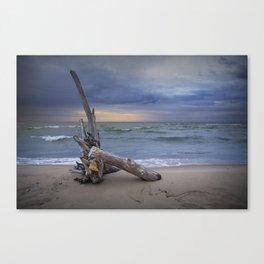 Sunrise on the Beach with Driftwood at Oscoda Michigan Canvas Print