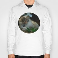nicolas cage Hoodies featuring Nicolas Cage Cat Wants Nip by HiddenStash Art