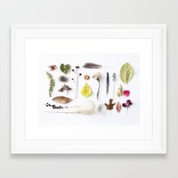 botanical Framed Art Prints featuring botanical by Miles of Light