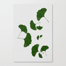 Ginkgo Leaf I Canvas Print
