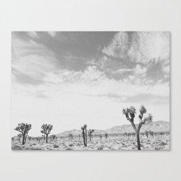 JOSHUA TREE V (B+W) Canvas Print