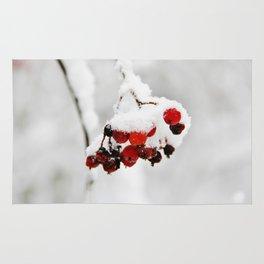 Bunch of red berries in winter Rug