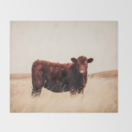 Red Angus Cow Art Throw Blanket