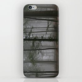 Atmospheric beech forest iPhone Skin