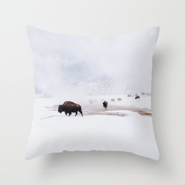 Wild Bison in Winter Throw Pillow