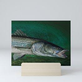 Striped Bass Fishing Art Prints Mini Art Print