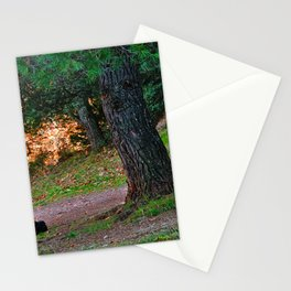 Dog under a pine tree Stationery Cards