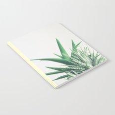 Overlap Notebook