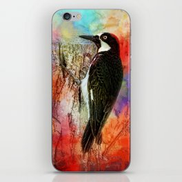 Acorn Woodpecker iPhone Skin