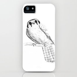American Kestrel pencil front on iPhone Case