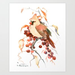 Cardinal and Berries Art Print