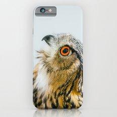 Eurasian Eagle Owl iPhone 6s Slim Case