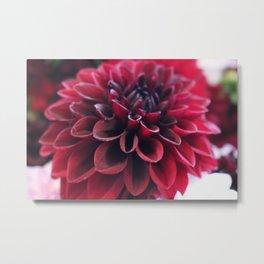 Hannah's Flower #2 Metal Print