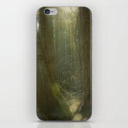 Fairy Glen iPhone Skin