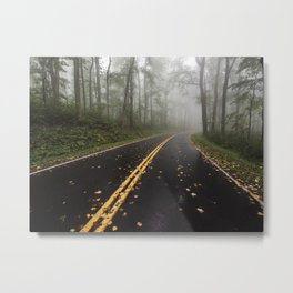 Smoky Mountain Summer Forest V - National Park Nature Photography Metal Print