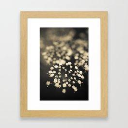 Summer Lace Framed Art Print