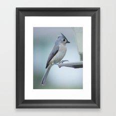 The Little Bird Framed Art Print