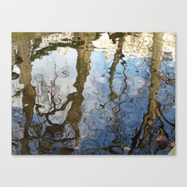 Reflections below the Medici Fountain,Luxembourg Gardens, Paris Canvas Print