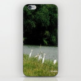 Fishing iPhone Skin