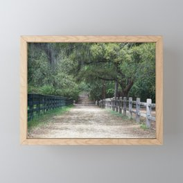 Dirt Road between fences Framed Mini Art Print