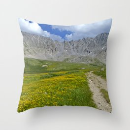 Mayflower Gulch brimming with wildflowers Throw Pillow