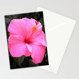 Hot pink Stationery Cards
