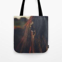 Horse photography, high quality, nature landscape fine art print Tote Bag