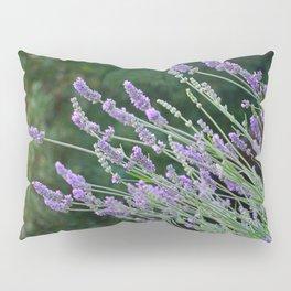 Lavender Divine Pillow Sham