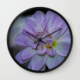 Porcelain Dahlia With Dewdrops Wall Clock