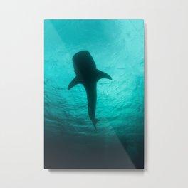 Whale shark silhouette Metal Print