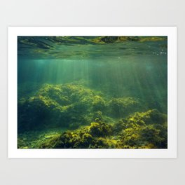 Underwater 2.0 IV. Art Print