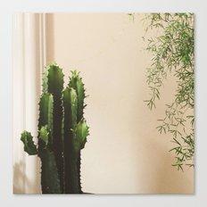 Cactus & Friend Canvas Print