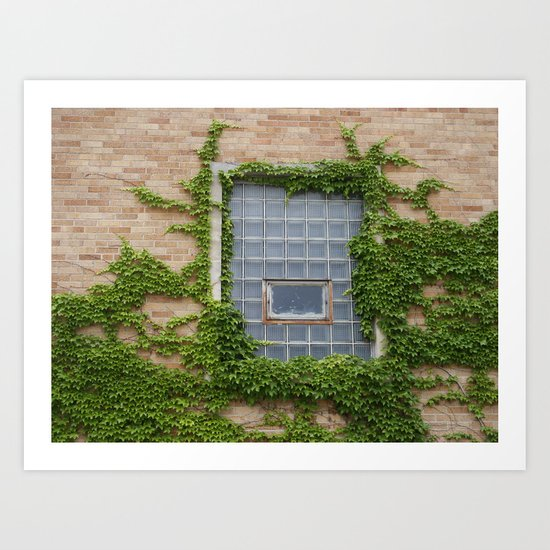 Ivy & Window Art Print