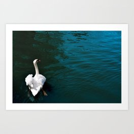 The Swan in the Moat Art Print