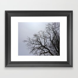 two birds sitting in the tree Framed Art Print