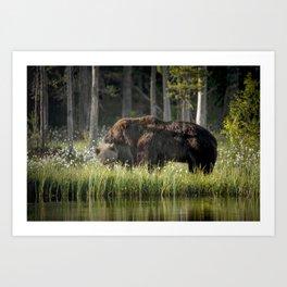 Morning kiss and (brown) bear hug Art Print