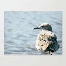 See-Thru Nose Canvas Print