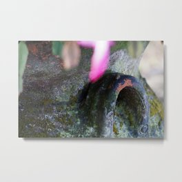 Christmas Cactus Flower Pot Metal Print