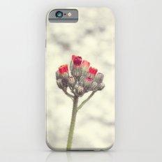 Wild flower iPhone 6s Slim Case