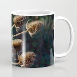 Sunlit Teasels Coffee Mug