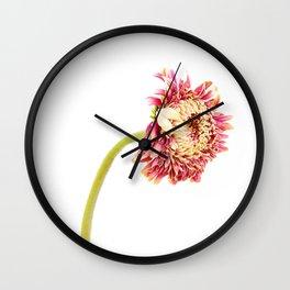 Gerbra 2 Wall Clock