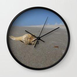 Conch Wall Clock