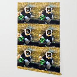Golden Lemur Wallpaper