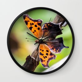 Eastern Comma Butterfly Landscape with Art Filter Wall Clock