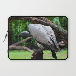 Perched White Vulture Laptop Sleeve