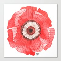 oana befort Canvas Prints featuring Red Poppy by Oana Befort