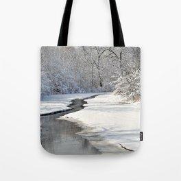 A quiet walk  Tote Bag